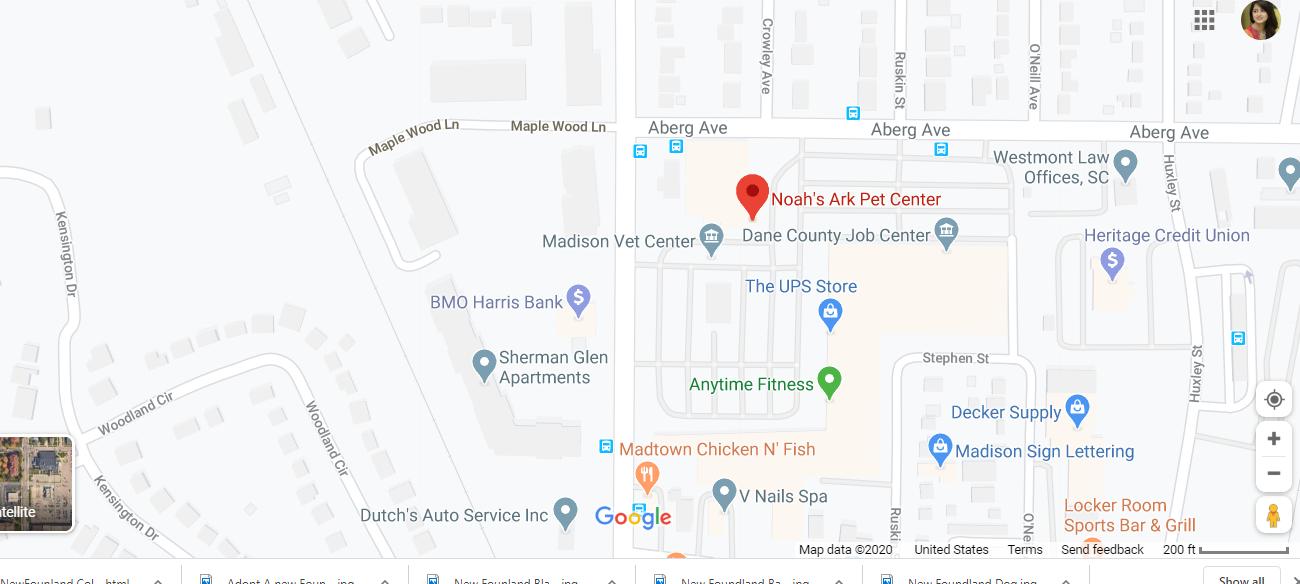 All Pet Stores Location in Nebraska