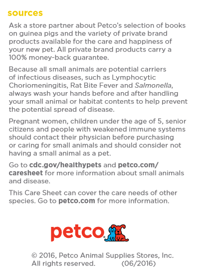 Do You Need A Does Petco Drug Test?