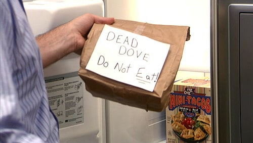 Dead Dove Do Not Eat Meaning